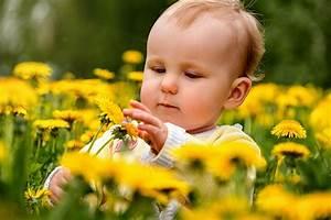 Spring Hay Fever Tips