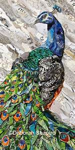 Wall, Art, Of, A, Peacock, From, Torn, Magazines, U2013, Deborah