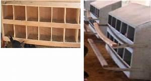 Fréquence Ponte Poule : memoire online etude de faisabilit d 39 un projet d 39 installation de ferme avicole moderne dans ~ Melissatoandfro.com Idées de Décoration