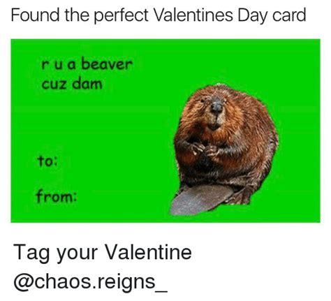 Funny Valentines Day Cards Meme - 25 best memes about valentines day cards valentines day cards memes