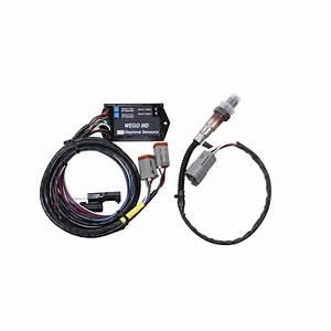 Ntk Oxygen Sensor Wiring Diagram Knock Sensor Wiring Diagram Wiring Diagram