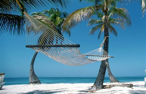 Hammock Day by Today Is National Hammock Day