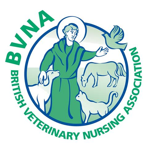 Bvna Launches Delving Deeper Into Wounds Course