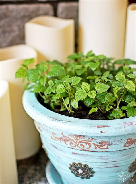 diy flower pot ideas  designs