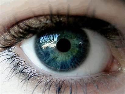 Eye Nova Optilux Deviantart