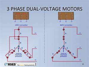 Split Phase Dual Voltage Motors Wiring Diagram