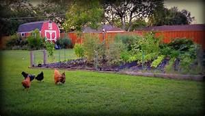 Cheap Texas Fall Vegetable Garden For Home Tips Collection