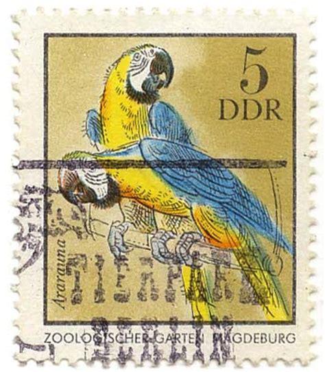 Zoologischer Garten Magdeburg  Ararauna  Ddr 1975