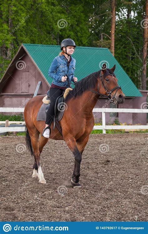 horse riding beginners lessons manege teenage vertical brown