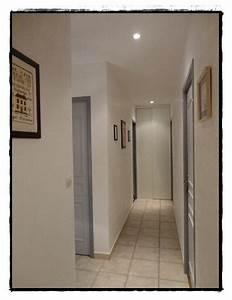 awesome couloir blanc et gris images design trends 2017 With ordinary quelle couleur avec du gris 2 1001 idees pour savoir quelle couleur pour un couloir