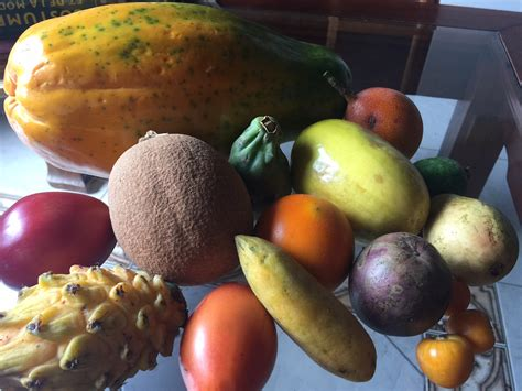 22 Exotic Tropical Fruits Of Colombia (2017 Update