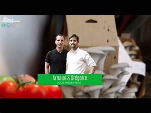 Comment Cultiver Des Champignons : comment cultiver votre bo te champignons youtube ~ Melissatoandfro.com Idées de Décoration