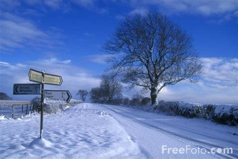 Christmas Decorations Lights by Winter Scene Northumberland Pictures Free Use Image 90