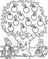 Apple Tree Coloring Pages Rabbit Trees Colouring Apples Printable Bunny Sheets Ocoloring sketch template