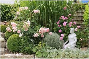 Pflanzkübel Für Rosen : rose berh ngend buchskugel silberne begleitpflanzen ~ A.2002-acura-tl-radio.info Haus und Dekorationen