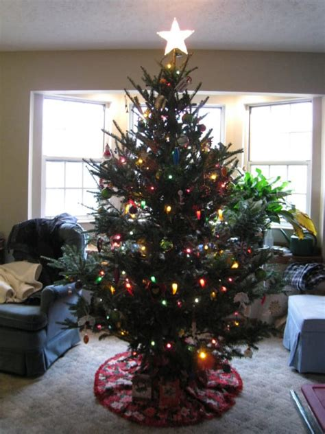 do real christmas trees have bugs miss the smell and feel of a real tree maybe you won t after reading this