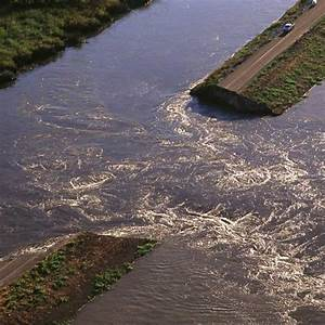 Vegetation and Wildlife Habitat | Riparian Ecology | River ...