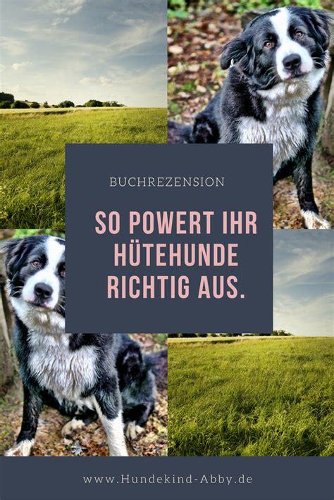 hund hunde hundesport beschaeftigung hundeblog