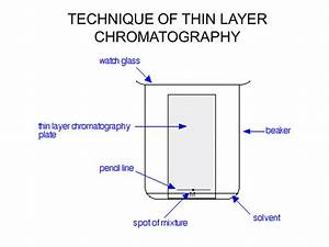 Thin Layer Chromatography Tlc