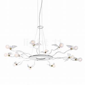 Ingo Maurer Birdie : ingo maurer birdie 39 s ring chandeliers buy at ~ Watch28wear.com Haus und Dekorationen