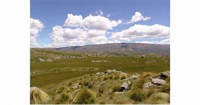 Zealand Scenic Landscapes