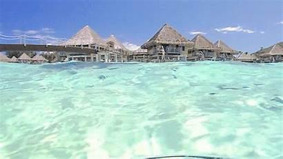 Tropical Beach Gifs Water Summer Paradise Sea