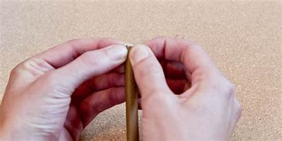 Blunt Split Roll Cigar Weed Cannabis Splitting