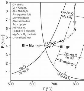 Isobaric Temperature U2013x H2o Phase Diagram For A Biotite