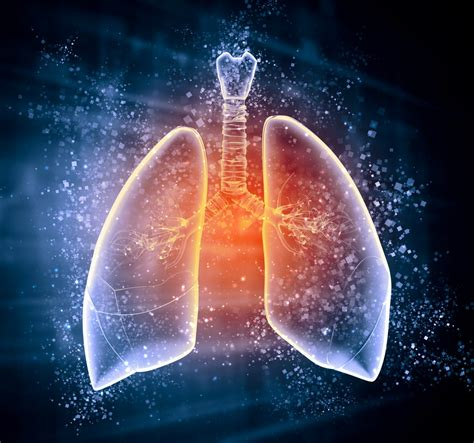 Changes In Lung Microbiota May Help Predict Cystic