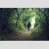 People In Nature Pictures | 900 x 600 jpeg 707kB