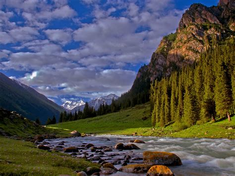Forest River Desktop Background 594036 : Wallpapers13.com