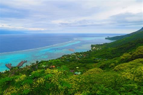 Top 10 Things To Do In Moorea Island X Days In Y
