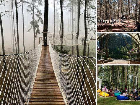 orchid forest cikole tempat asyik wisata alam  lembang