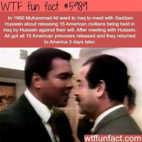 Funny Wtf Memes - 17 best images about g o a t on pinterest legends mohamed ali and george foreman