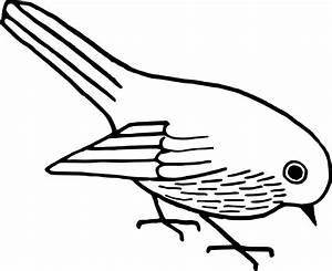 Free Clip Art Bird | Clip Art Department