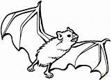 Coloring Bat Pages Printable Print sketch template