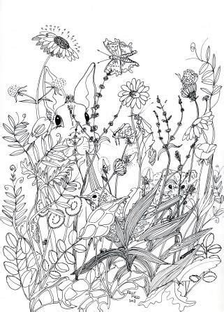 drawing wildflowers google search tattoo ideas