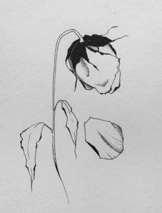 rose wilted flower tattoo dead roses drawing dead flower drawing | Too Neat To Ignore