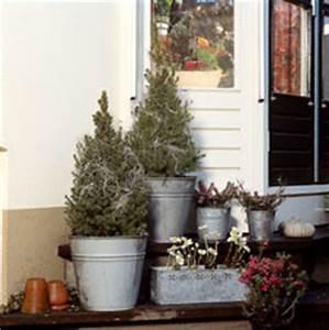 Winterharte Sträucher Für Balkon : pflanzen in nanopics gartenbrunnen gestaltung ideen kies mosaik stauden ~ Markanthonyermac.com Haus und Dekorationen