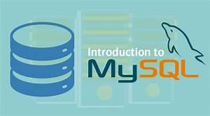 Mysql Relational Database Tutorial Pdf