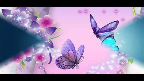 Wallpapers Images Hd by Beautiful Butterfly Wallpapers Hd Pictures