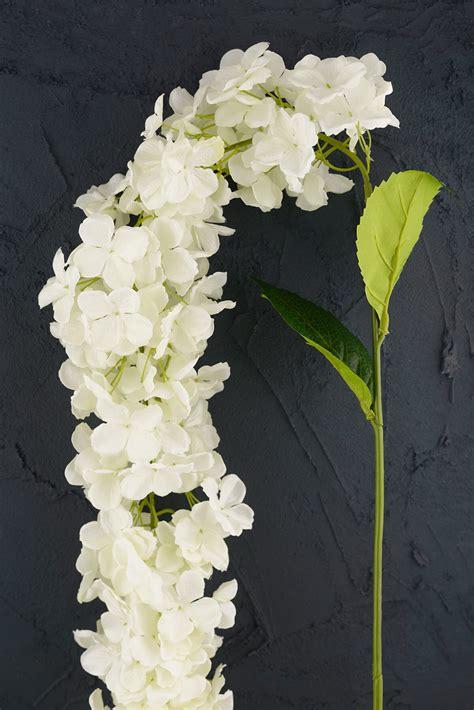 hanging hydrangea white