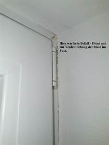 Schimmel Am Fenster Entfernen : schimmel am bergang fenster mauer seite 2 ~ Michelbontemps.com Haus und Dekorationen