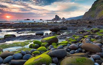 Moss Covered Stones Shore Nature Sunny Shores