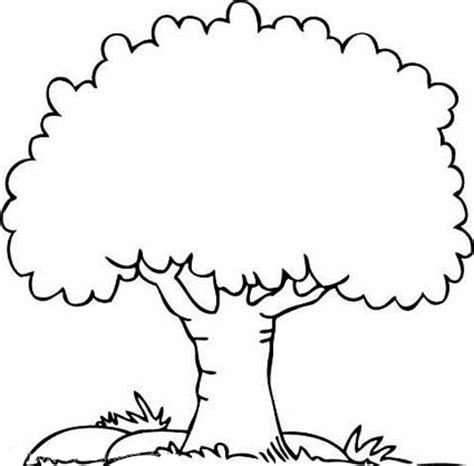 shady oak tree coloring page color luna