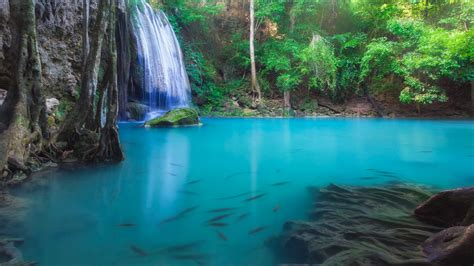 Erawan Waterfall In Deep Forest Over Pond With Fishes