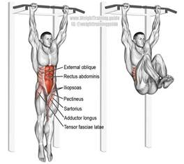 25 best ideas about hanging leg raises on insanity ab workout ab workouts and