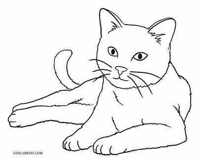 Coloring Cat Pages Printable Cool2bkids Nyan Colors