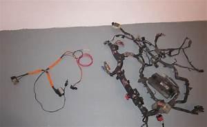 Dodge Neon Motor Wiring Harnes