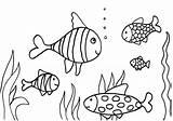 Fish Coloring Printable Children Imagixs Via sketch template